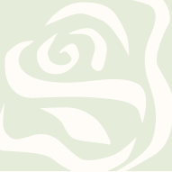 Where to Find White Rose's Routing Number on Your Check/></a>