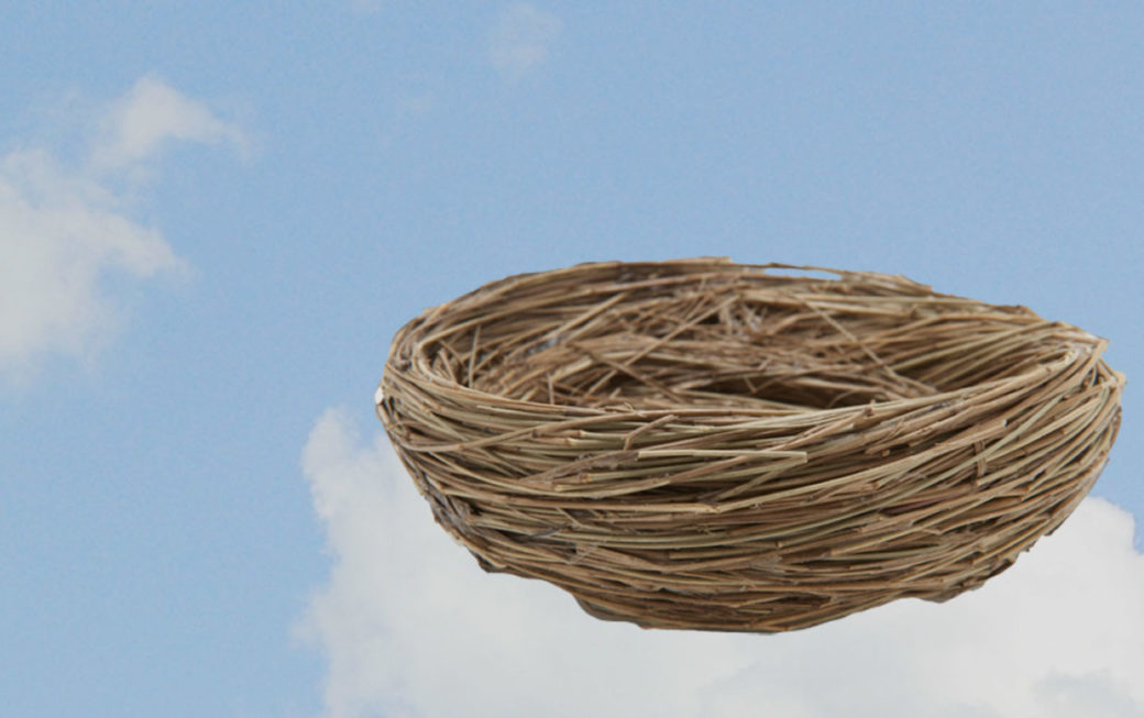 empty nest in the clouds